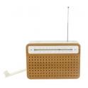 SAFE radio