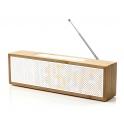 TITANIUM CLOCK radio